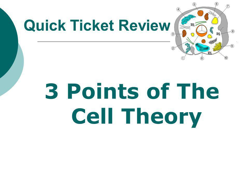 3 Points of The Cell Theory