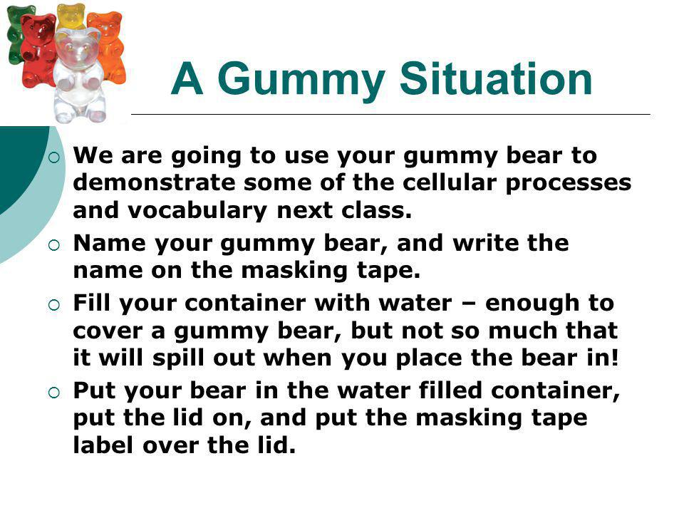 A Gummy Situation We are going to use your gummy bear to demonstrate some of the cellular processes and vocabulary next class.