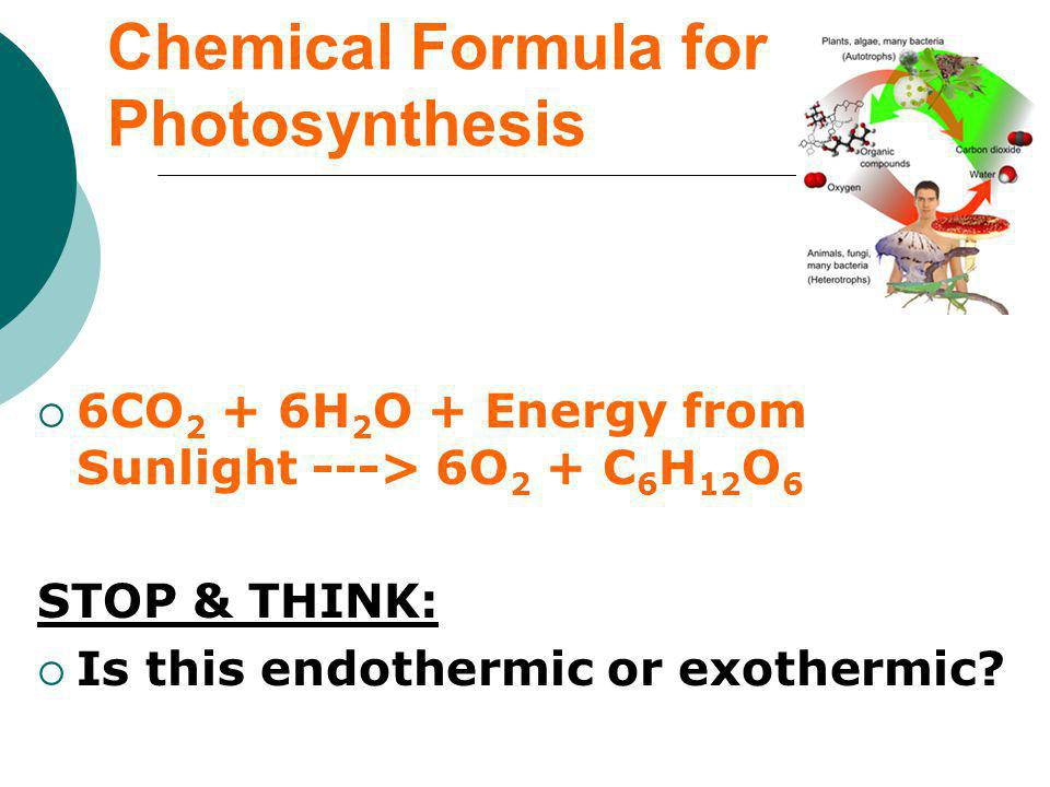 Chemical Formula for Photosynthesis