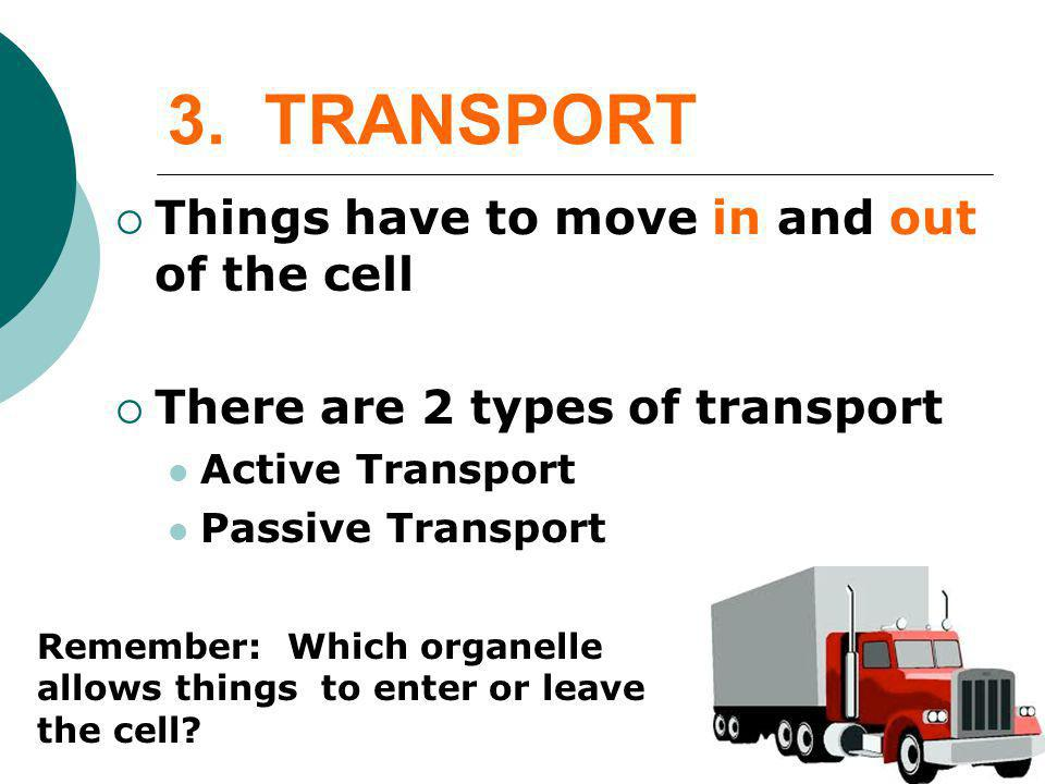 3. TRANSPORT Things have to move in and out of the cell