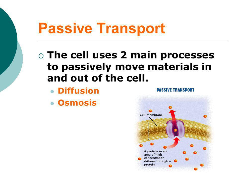 Passive Transport The cell uses 2 main processes to passively move materials in and out of the cell.