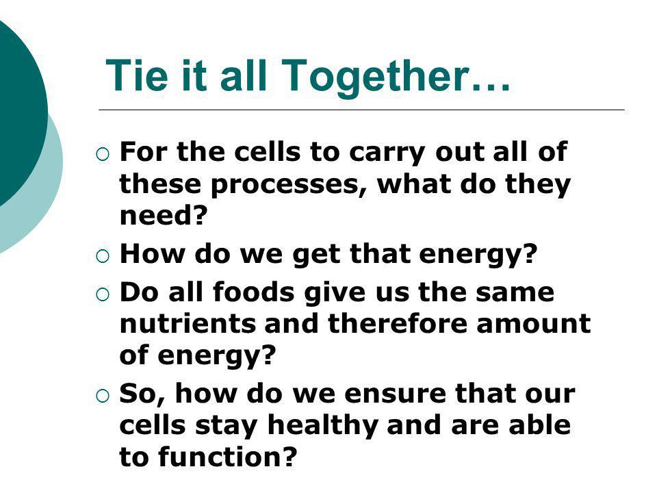 Tie it all Together… For the cells to carry out all of these processes, what do they need How do we get that energy