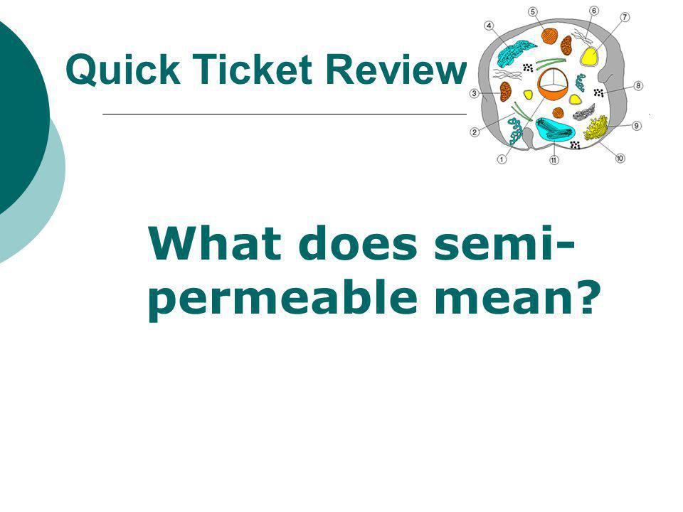 What does semi-permeable mean