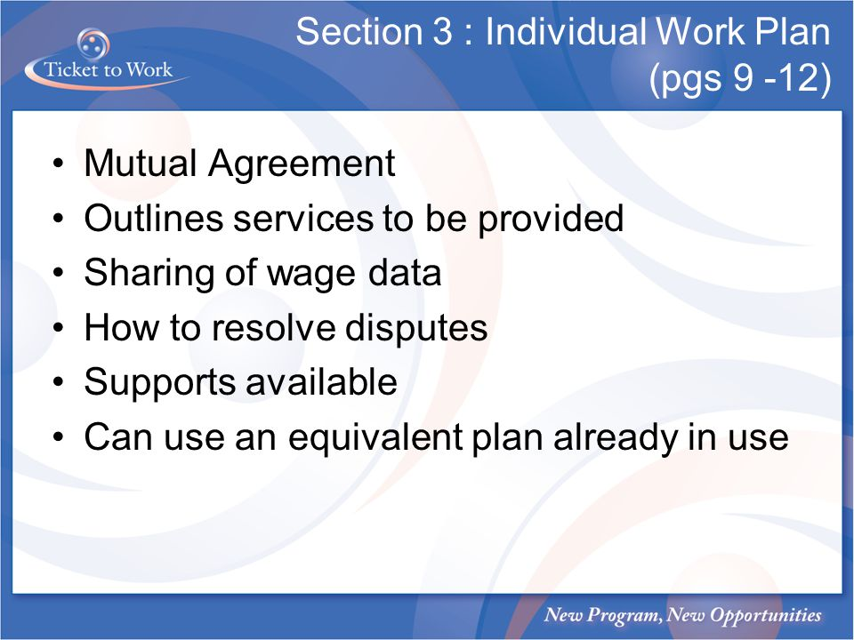 Section 3 : Individual Work Plan (pgs 9 -12)