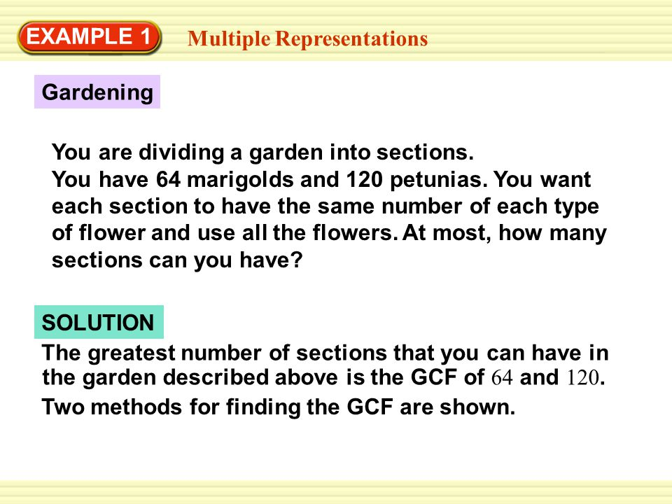 EXAMPLE 1 Multiple Representations. Gardening.