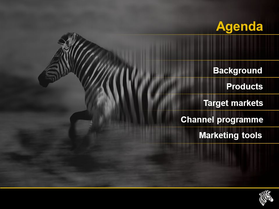 Agenda Background Products Target markets Channel programme