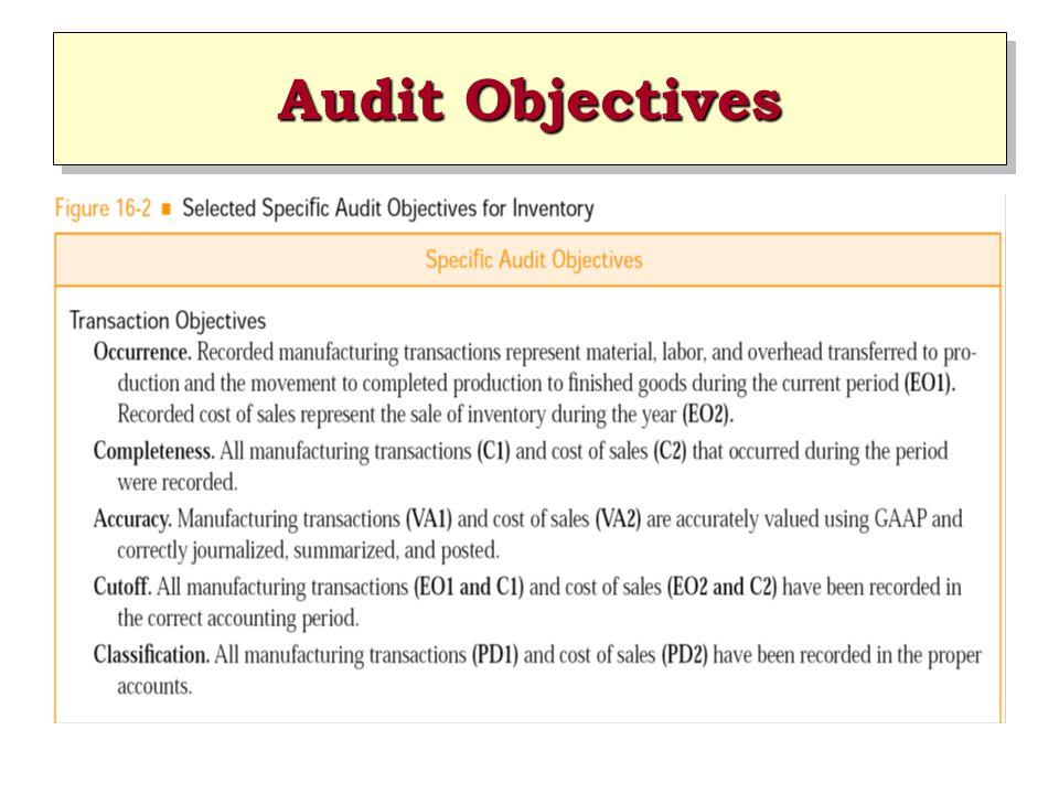 Audit Objectives