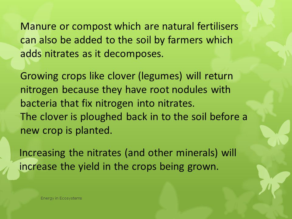 Manure or compost which are natural fertilisers