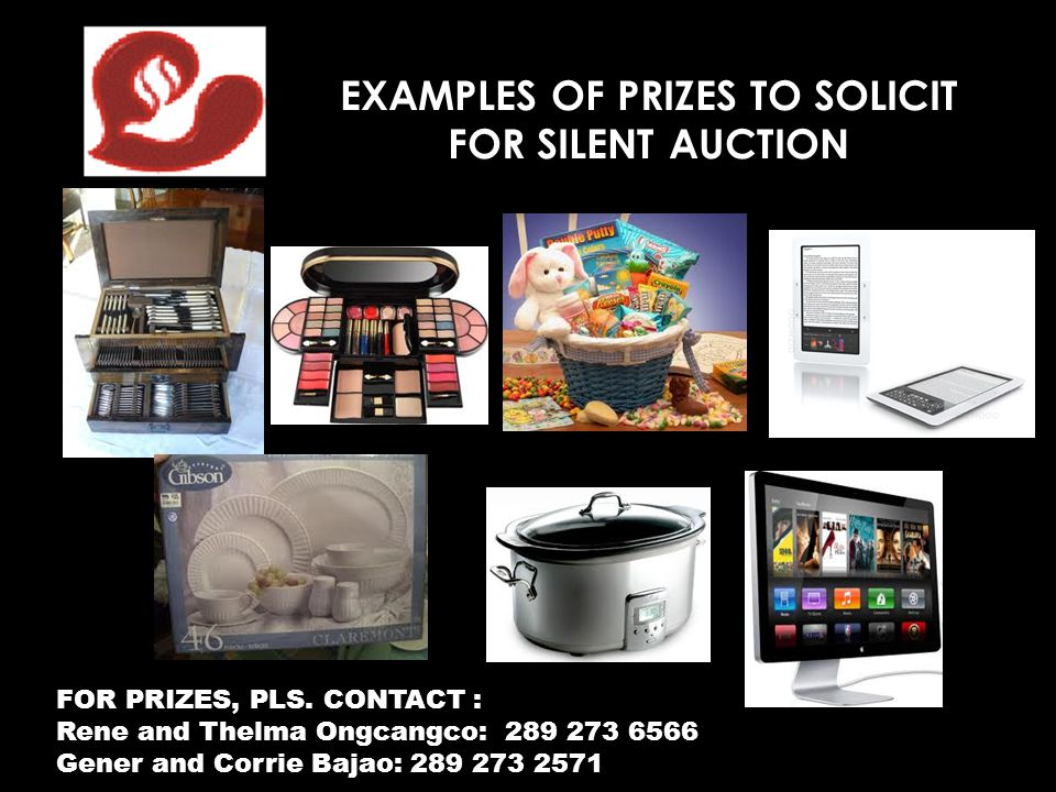 EXAMPLES OF PRIZES TO SOLICIT
