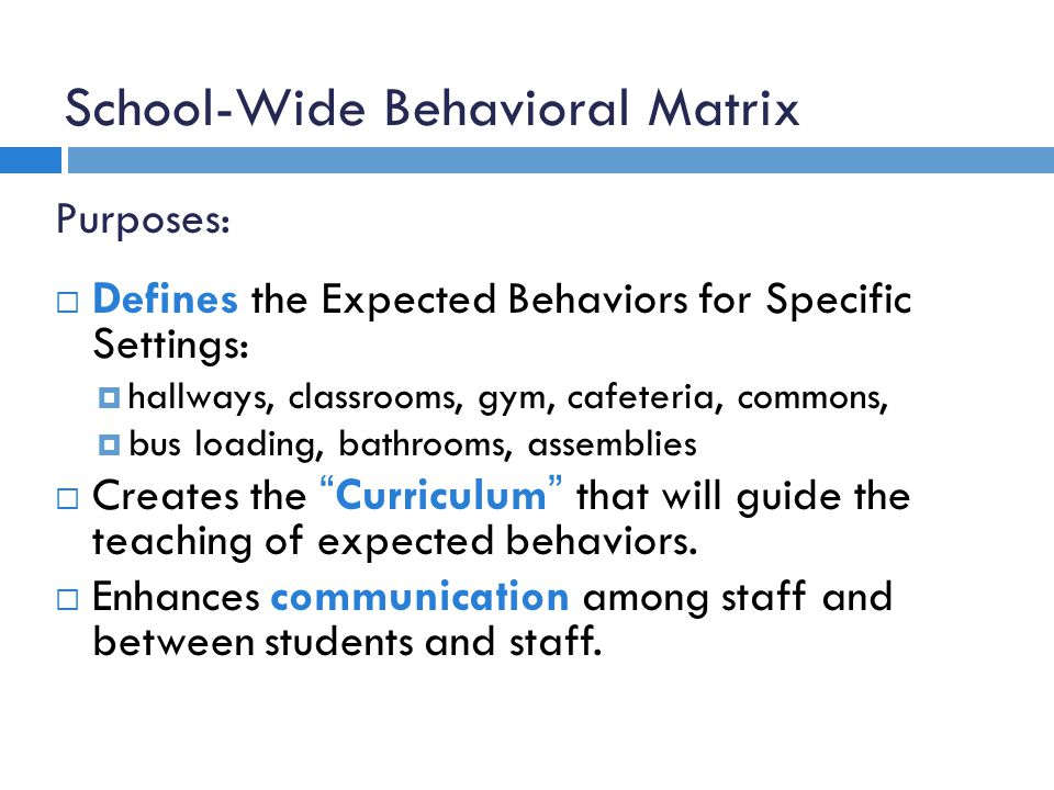 School-Wide Behavioral Matrix