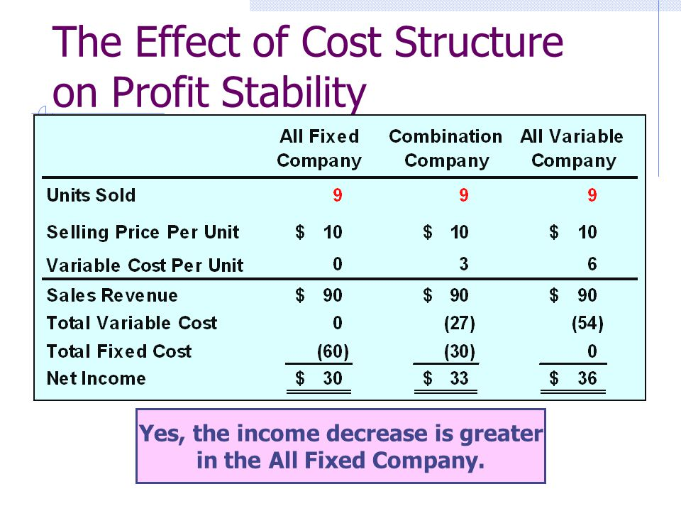 The Effect of Cost Structure on Profit Stability