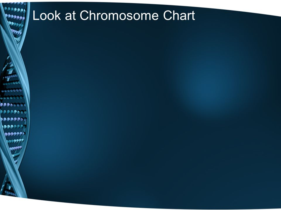 Look at Chromosome Chart
