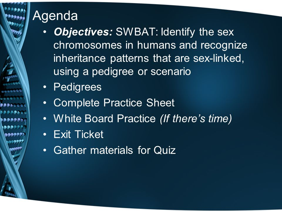 Agenda Objectives: SWBAT: Identify the sex chromosomes in humans and recognize inheritance patterns that are sex-linked, using a pedigree or scenario.