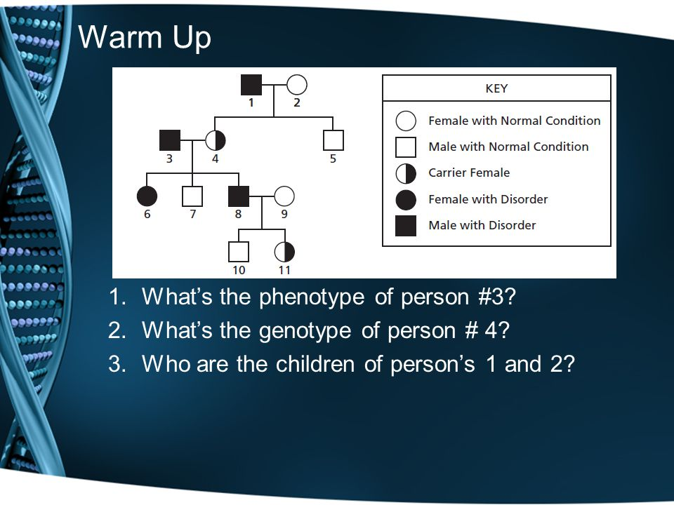 Warm Up What's the phenotype of person #3