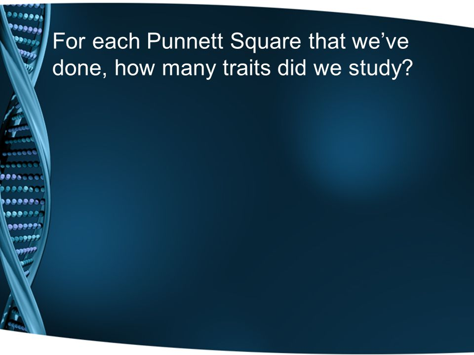 For each Punnett Square that we've done, how many traits did we study