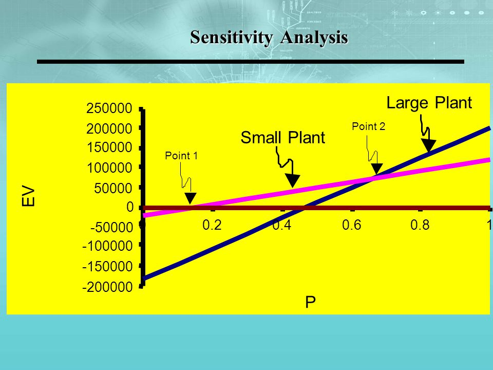 Sensitivity Analysis Large Plant Small Plant EV P