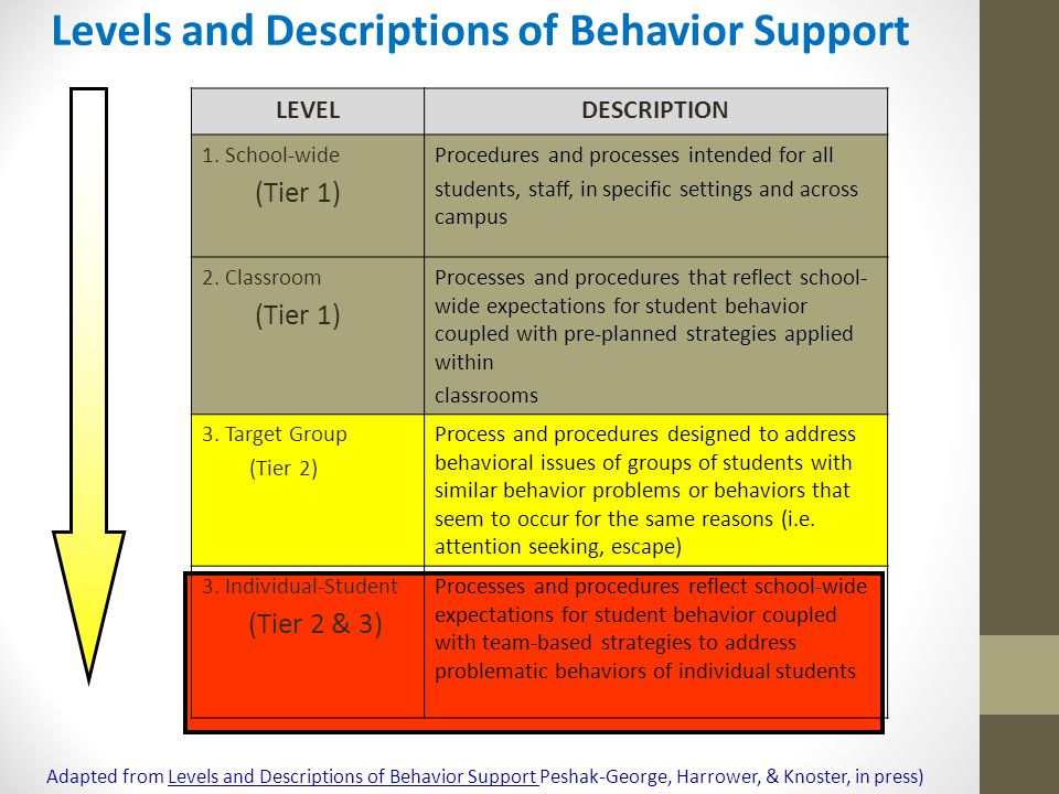 Levels and Descriptions of Behavior Support