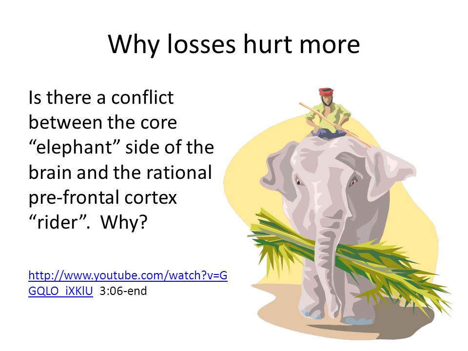 Why losses hurt more Is there a conflict between the core elephant side of the brain and the rational pre-frontal cortex rider . Why