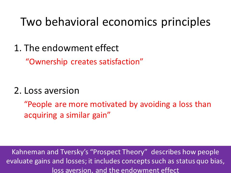 Two behavioral economics principles