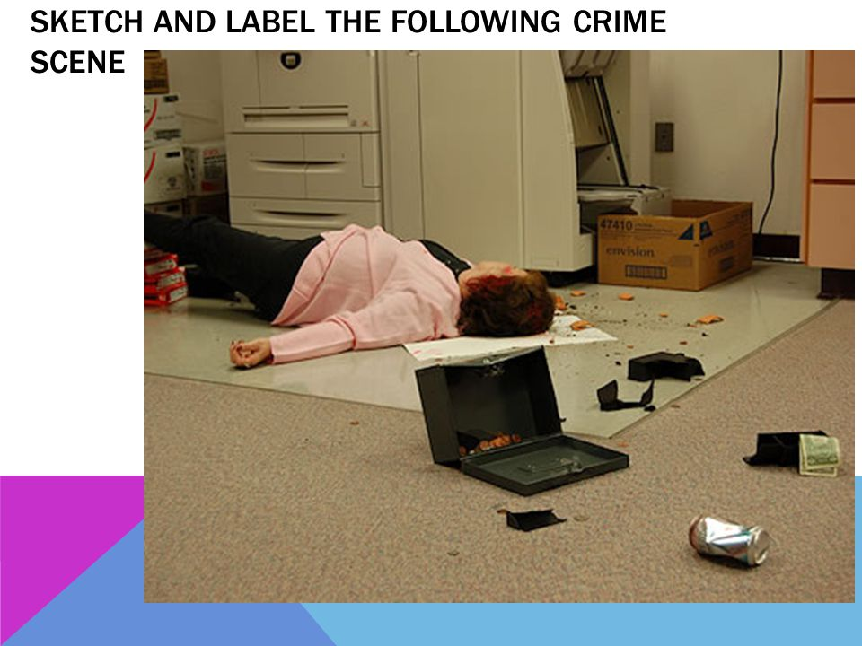 Sketch and label the following crime scene