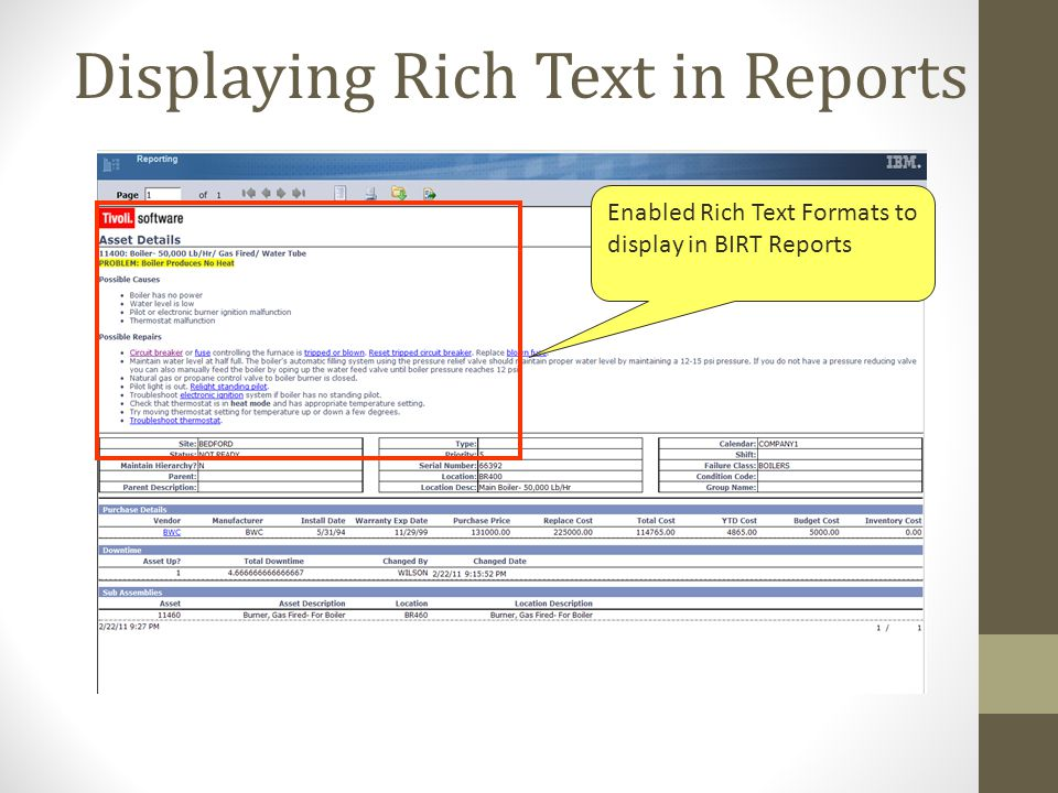 Displaying Rich Text in Reports