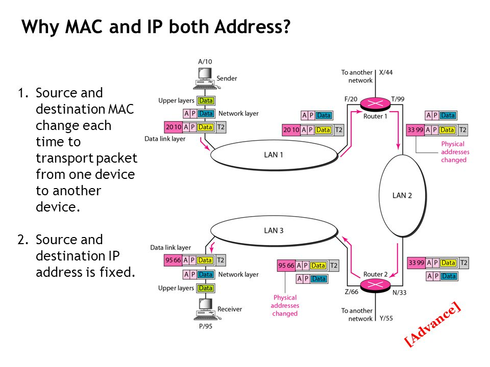 Why MAC and IP both Address