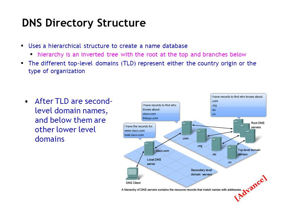DNS Directory Structure