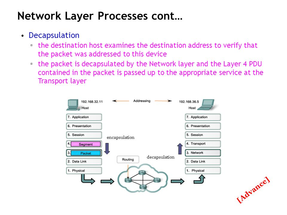 Network Layer Processes cont…