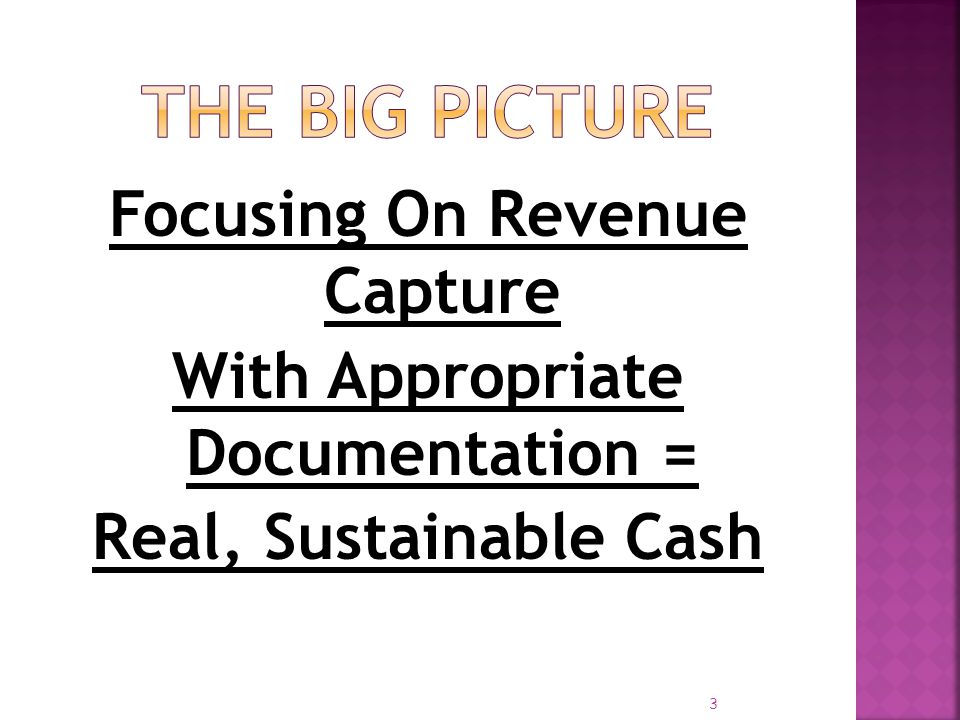 The Big Picture Focusing On Revenue Capture With Appropriate Documentation = Real, Sustainable Cash