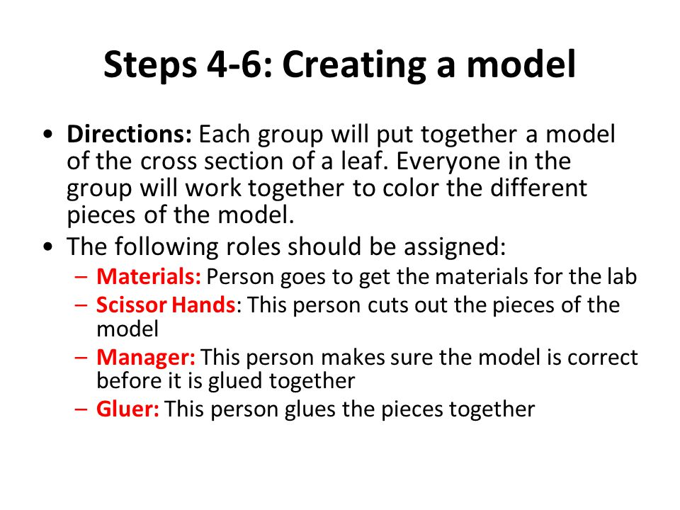 Steps 4-6: Creating a model