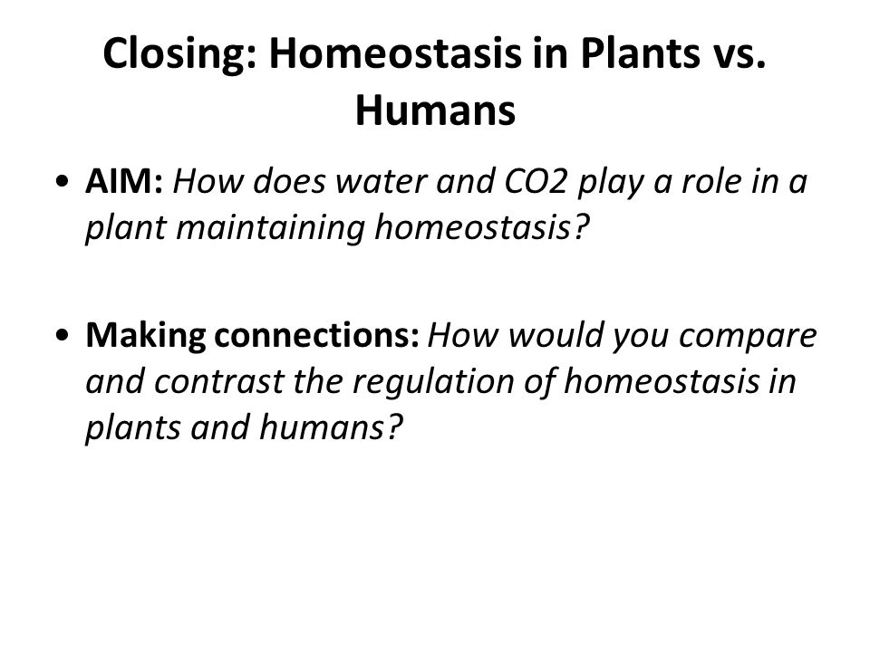 Closing: Homeostasis in Plants vs. Humans