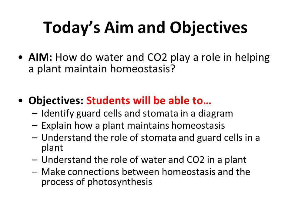 Today's Aim and Objectives