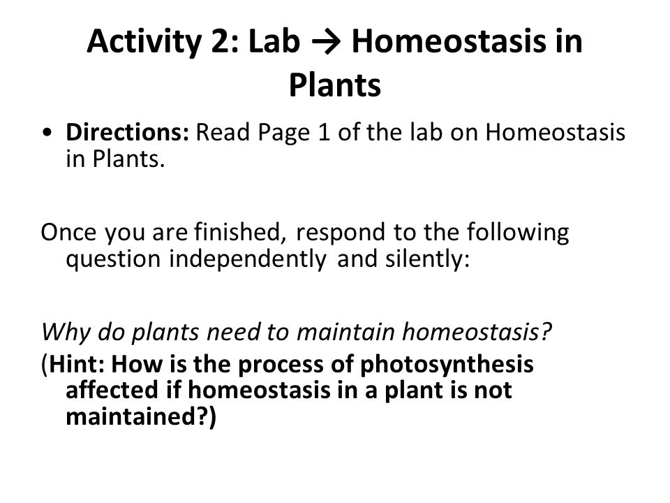 Activity 2: Lab → Homeostasis in Plants
