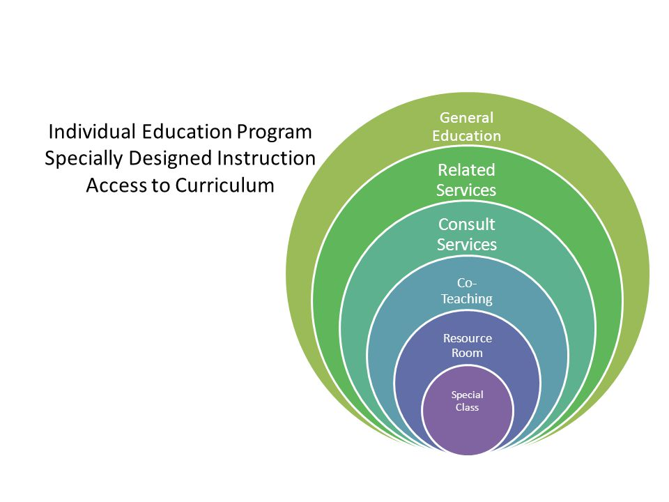 Individual Education Program Specially Designed Instruction