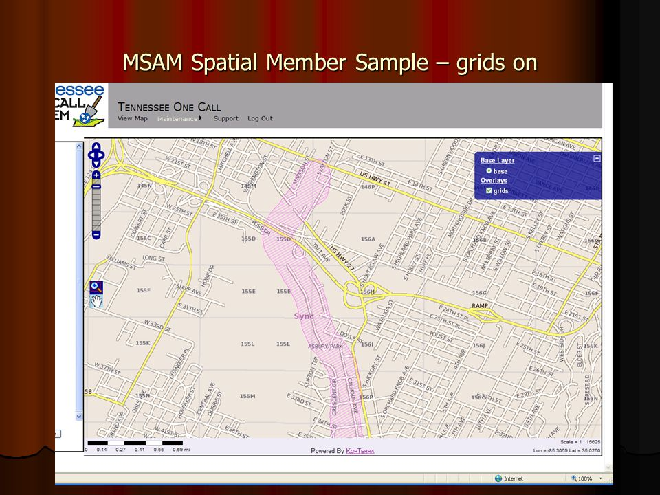 MSAM Spatial Member Sample – grids on