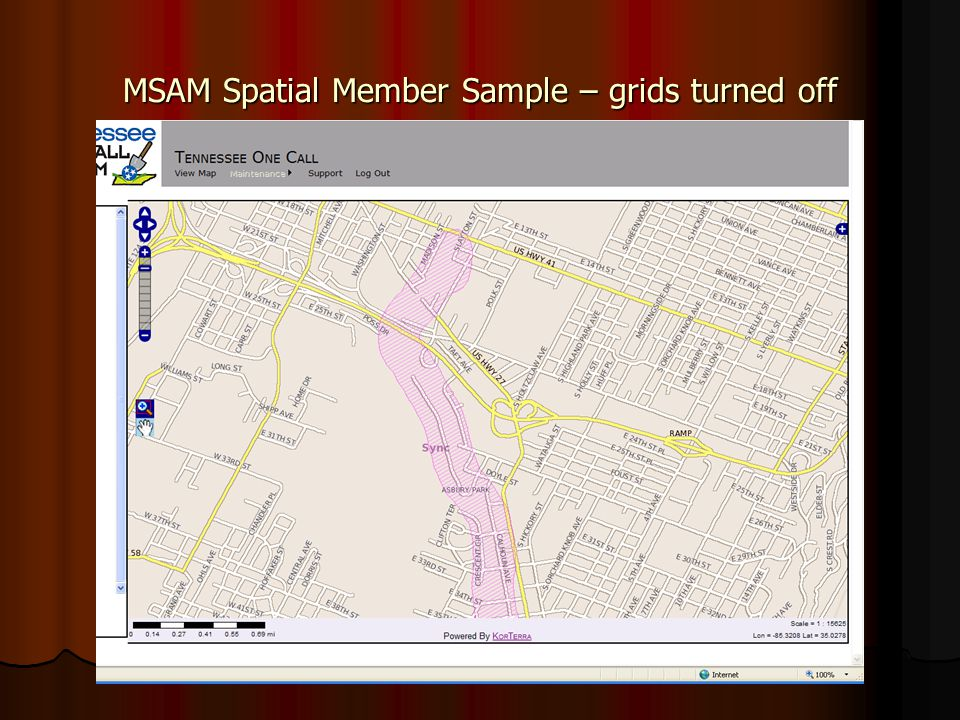 MSAM Spatial Member Sample – grids turned off