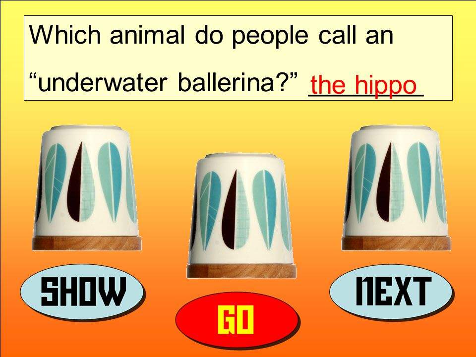 Which animal do people call an underwater ballerina ________