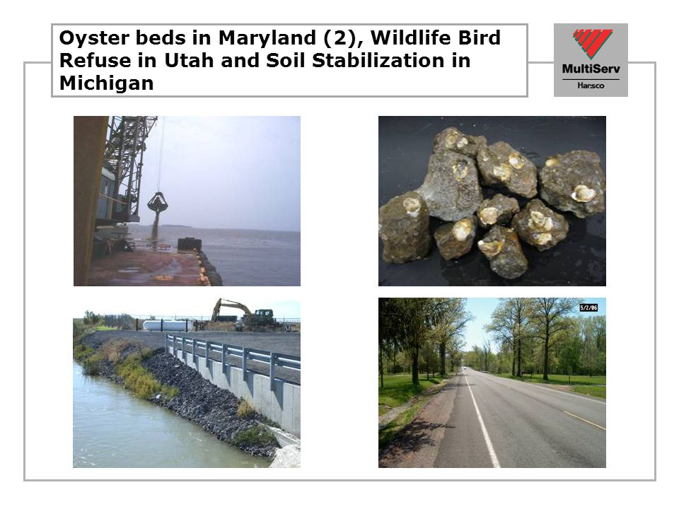 Oyster beds in Maryland (2), Wildlife Bird Refuse in Utah and Soil Stabilization in Michigan