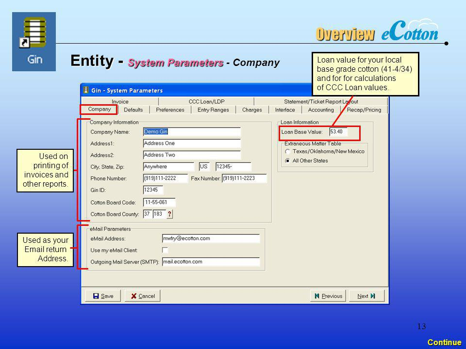 Entity - System Parameters - Company