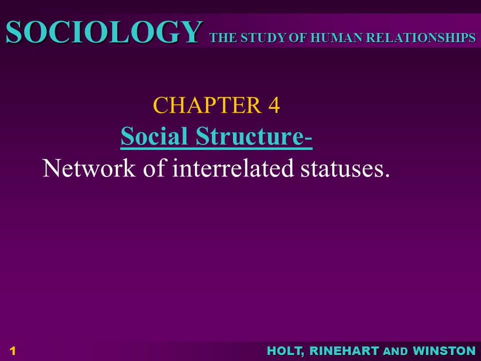 CHAPTER 4 Social Structure- Network of interrelated statuses.