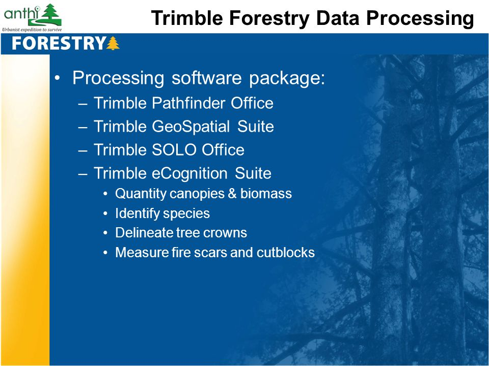 Trimble Forestry Data Processing