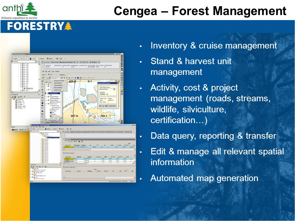Cengea – Forest Management