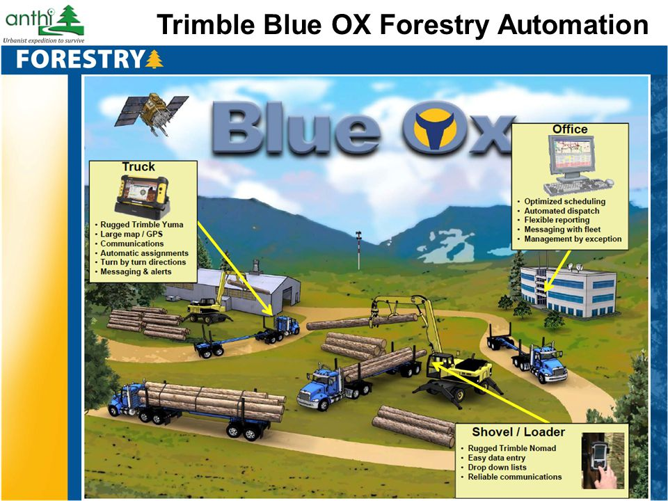 Trimble Blue OX Forestry Automation