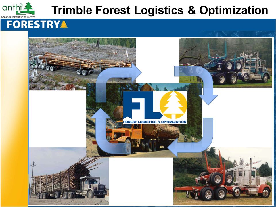 Trimble Forest Logistics & Optimization
