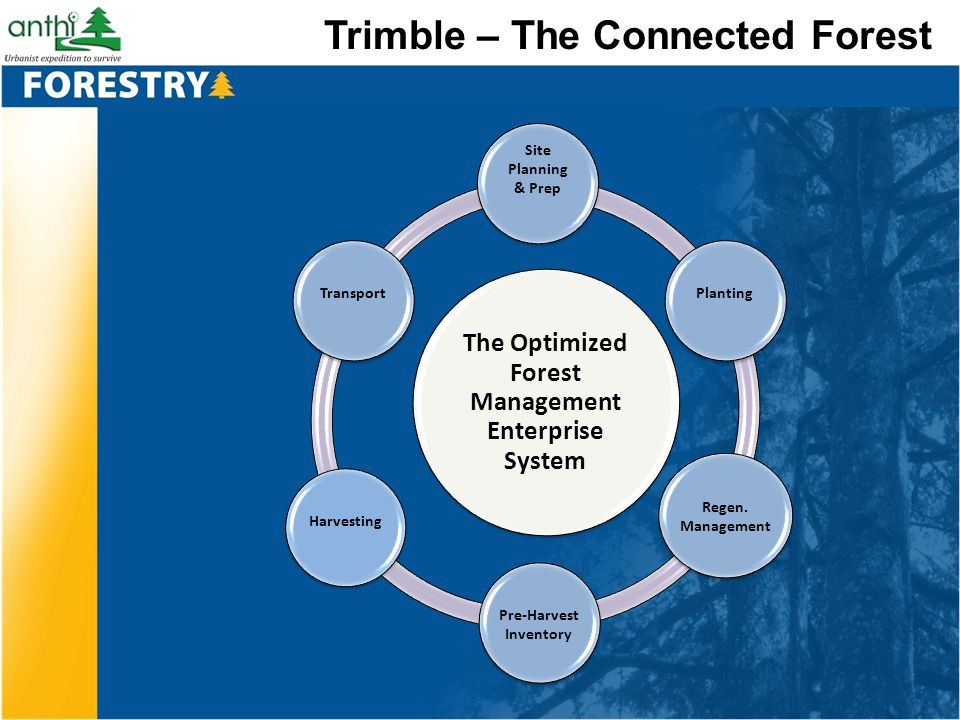 Trimble – The Connected Forest