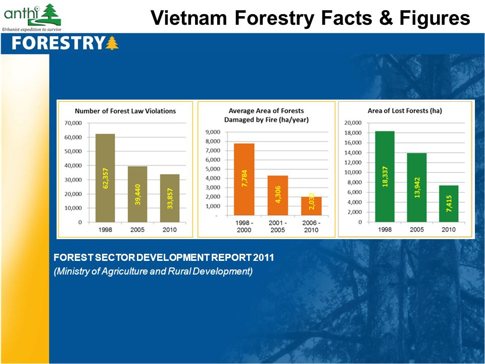 Vietnam Forestry Facts & Figures