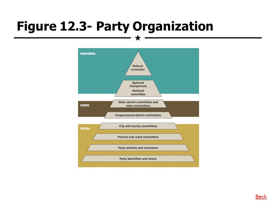 Figure 12.3- Party Organization