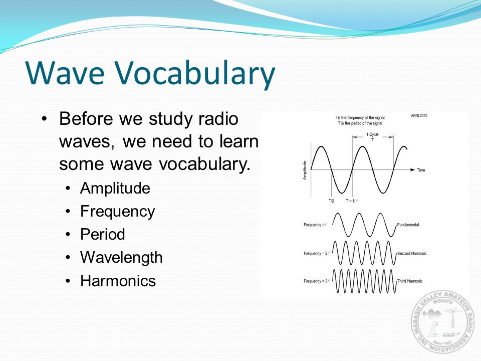 Wave Vocabulary Before we study radio waves, we need to learn some wave vocabulary. Amplitude. Frequency.
