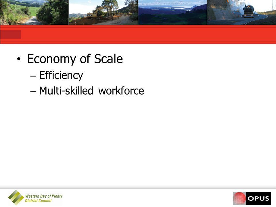 Economy of Scale Efficiency Multi-skilled workforce