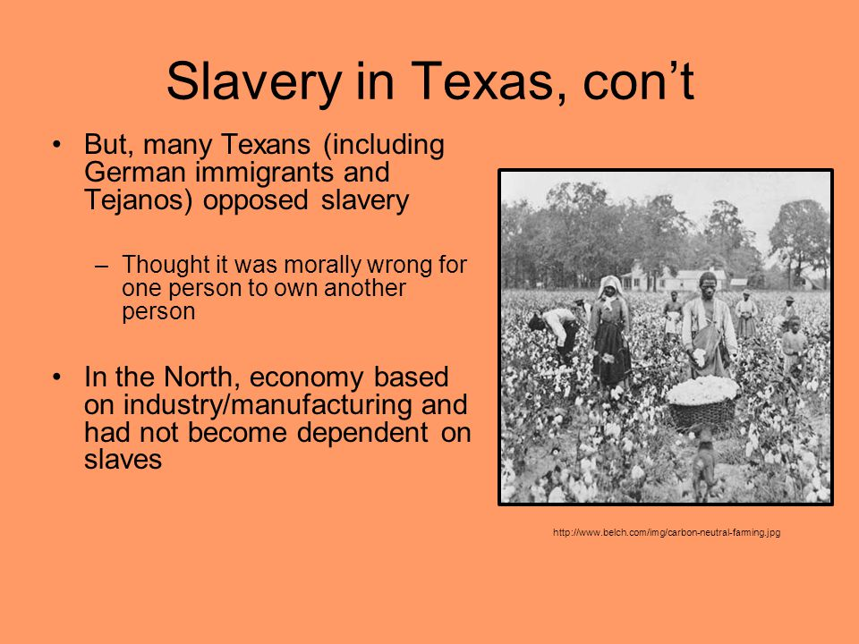 Slavery in Texas, con't But, many Texans (including German immigrants and Tejanos) opposed slavery.